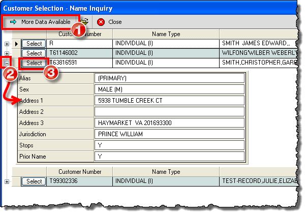 DMV Select - System Help - Selecting from Multiples